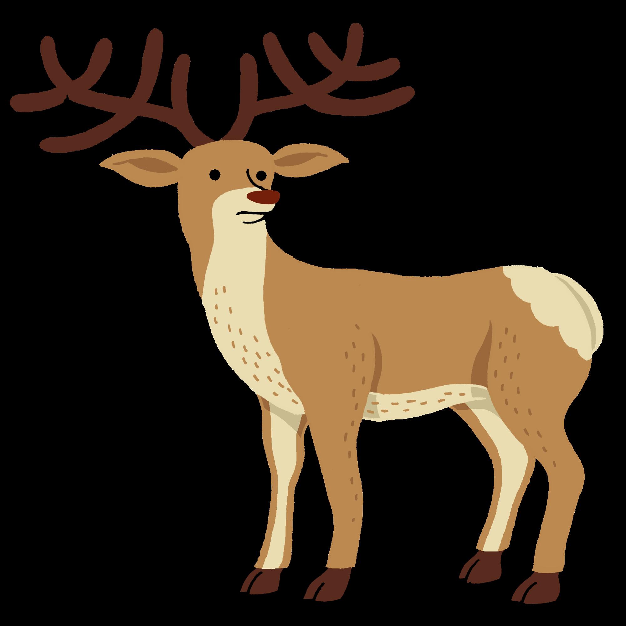 Histoires naturelles raconte moi - Dessin bois de cerf ...